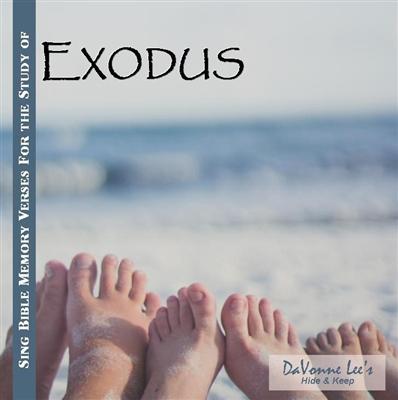 Catholic Bible Study Programs DVD, CD and Books